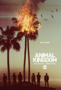 دانلود زیرنویس فارسی سریال Animal Kingdom | دانلود زیرنویس سریال Animal Kingdom | زیرنویس فارسی سریال Animal Kingdom | زیرنویس سریال Animal Kingdom |