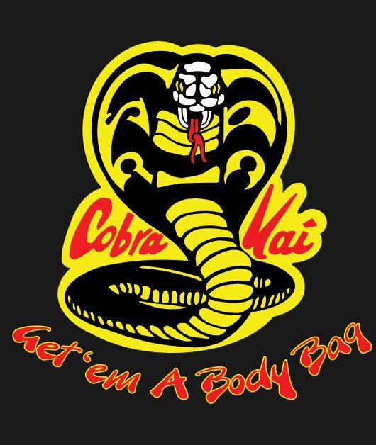 دانلود زیرنویس فارسی سریال Cobra Kai