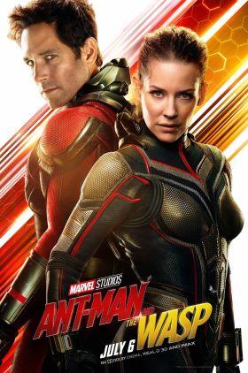 دانلود زیرنویس فارسی فیلم Ant-Man and the Wasp